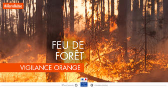 Vigilance : mesures de protection contre les incendies de forêt